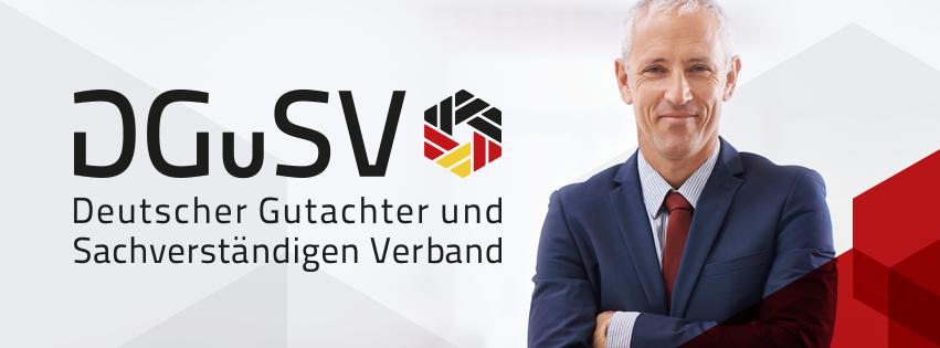 dgsv logo 2